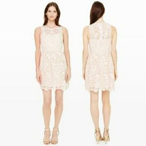 Club Monaco Jayla Lace Dress Size 6